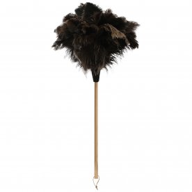 CAPE FEATHER DUSTER